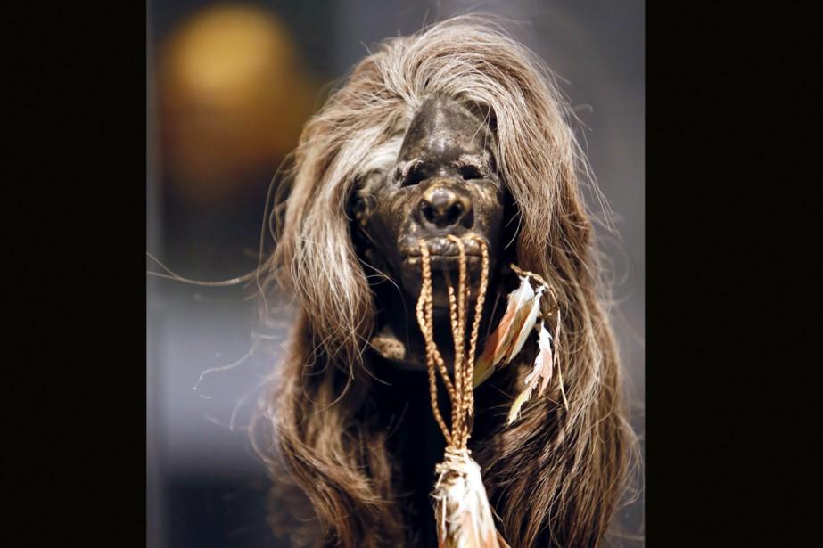 La réalisation d'une tête réduite, qui consiste à... (archives AFP)