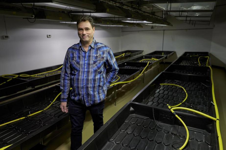 Stéphane Papineau, propriétaire d'Agri-Médic ASP, la quatrième entreprise... (Photo André Pichette, La Presse)