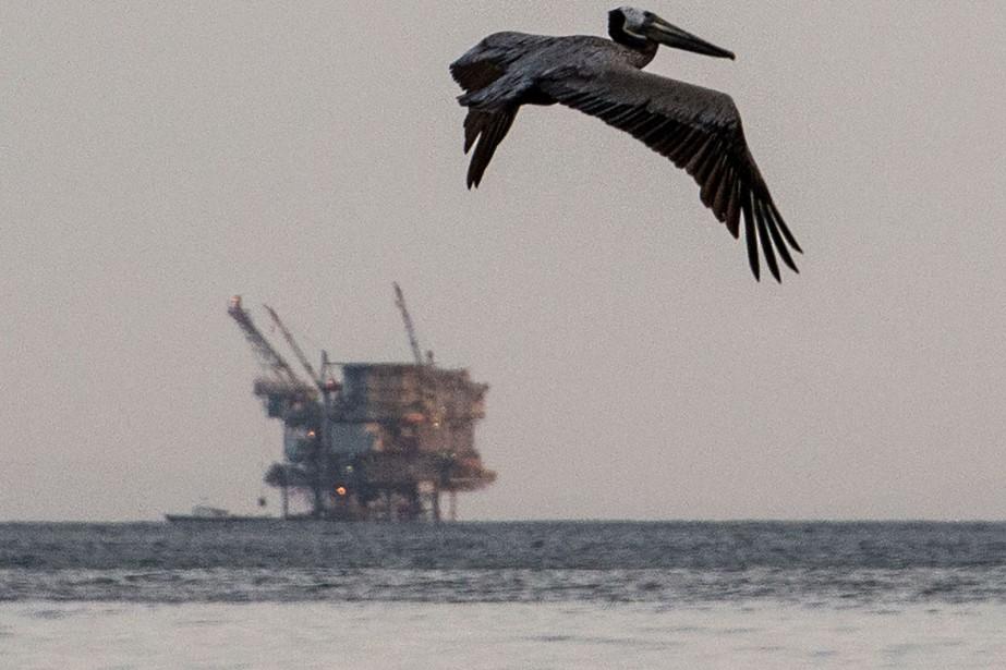 La décision concerne 90% des eaux côtières américaines... (ARCHIVES AFP)