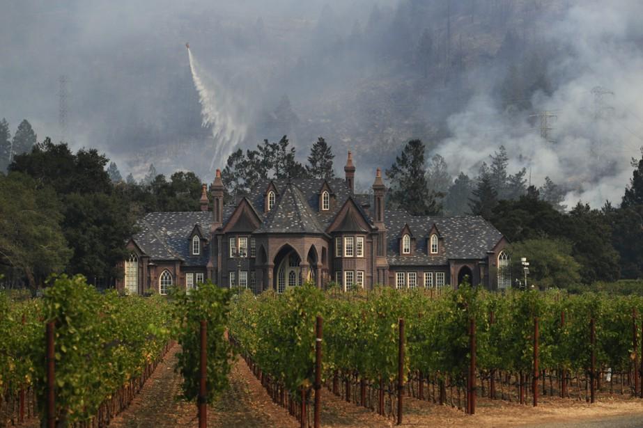 Un vignoble de Santa Rosa, en Californie, ravagé... (Photo archives AP)