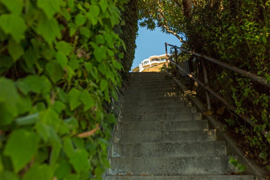 On peut découvrir les différents escaliers de façon intuitive; mais pour une randonnée plus efficace, le site Secret Stairs LA recèle de suggestions de parcours à emprunter, avec maints détails sur certains bâtiments et maisons croisés au fil de la promenade. (PHOTO OLIVIER JEAN, LA PRESSE)
