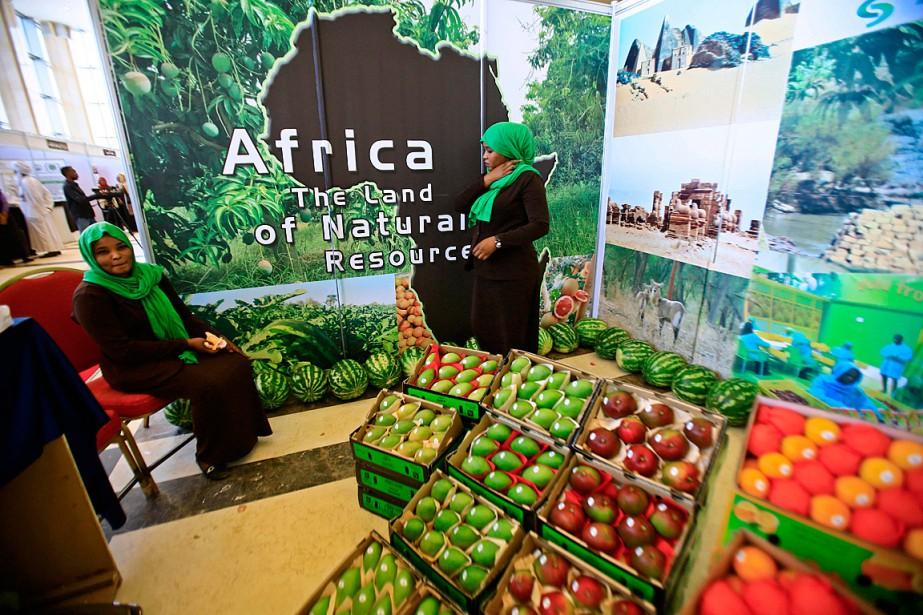 Des centaines de représentants de pays africains participent... (PHOTO ASHRAF SHAZLY, AGENCE FRANCE-PRESSE)