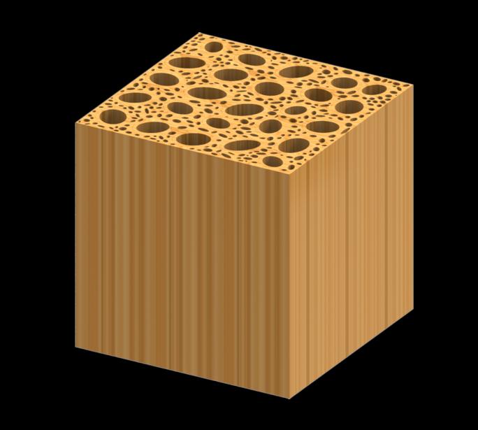Représentation du bois à l'état naturel. (Image LABORATOIRE BING, UNIVERSITÉ DU MARYLAND)