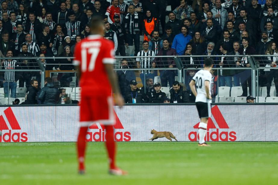 Le match de huitième de finale retour de la Ligue... (Photo Osman Orsal, Reuters)