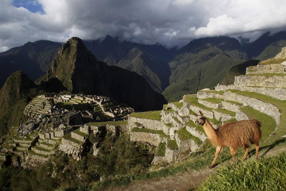 Les autorités péruviennes considèrent comme un délit de... (PHOTO REUTERS)