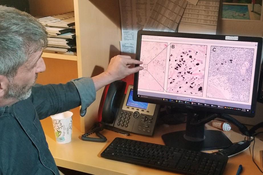 Le chercheur Neil Theise.... (Photo Elly Park, REUTERS)