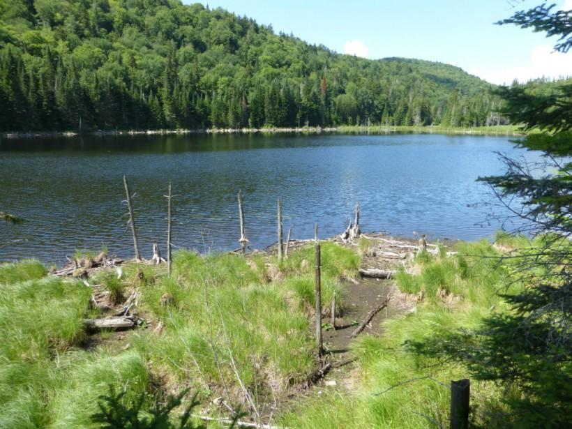Une photo du nouveau territoire protégé.... (Photo fournie par CNC.)