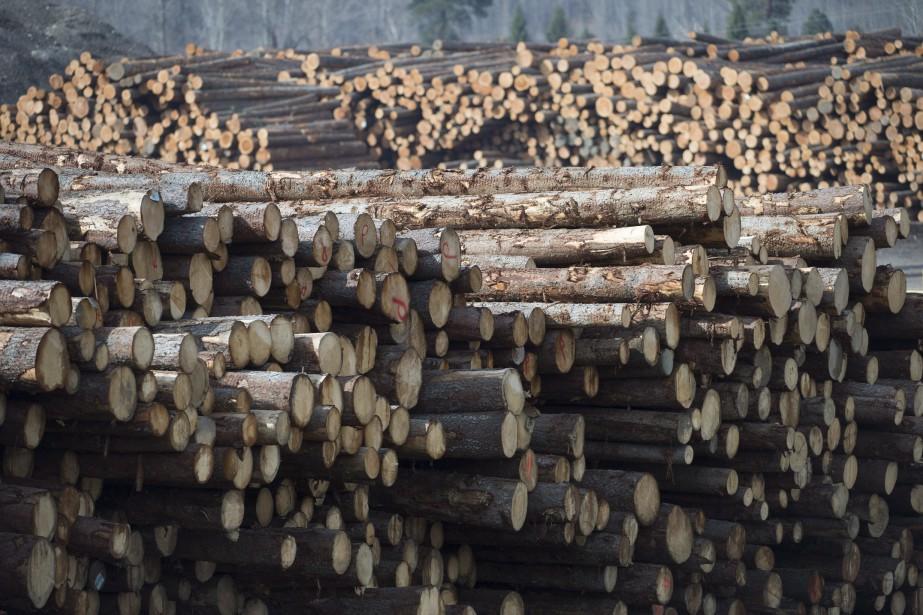 Quelque 60 000 emplois dépendent de l'industrie forestière... (Photo Jonathan Hayward, Archives La Presse canadienne)
