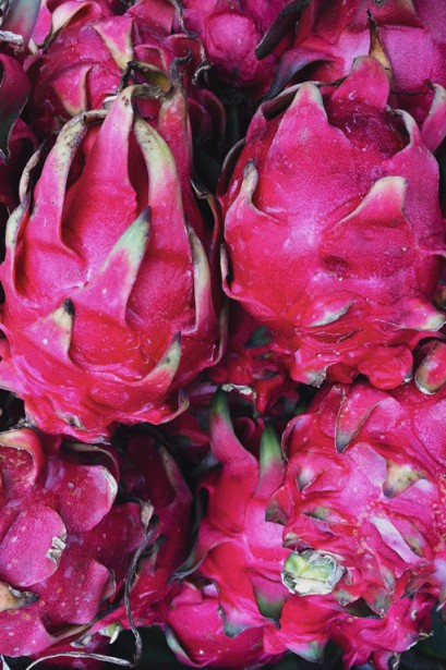 De flamboyants pitayas, ou fruits du dragon, ornent les embarcations. | 11 mai 2018