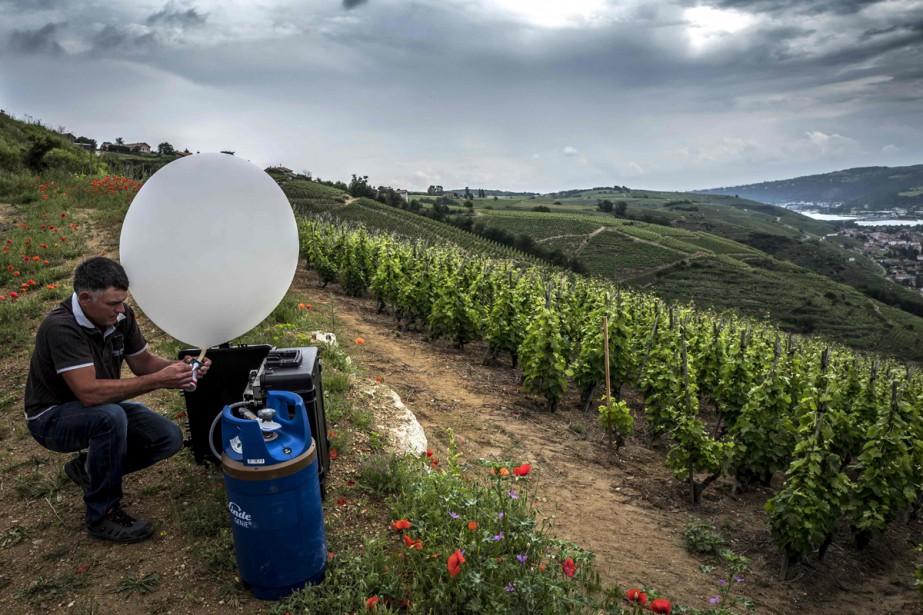 Lancés à 600 mètres d'altitude, les ballons agissent... (Photo AFP)