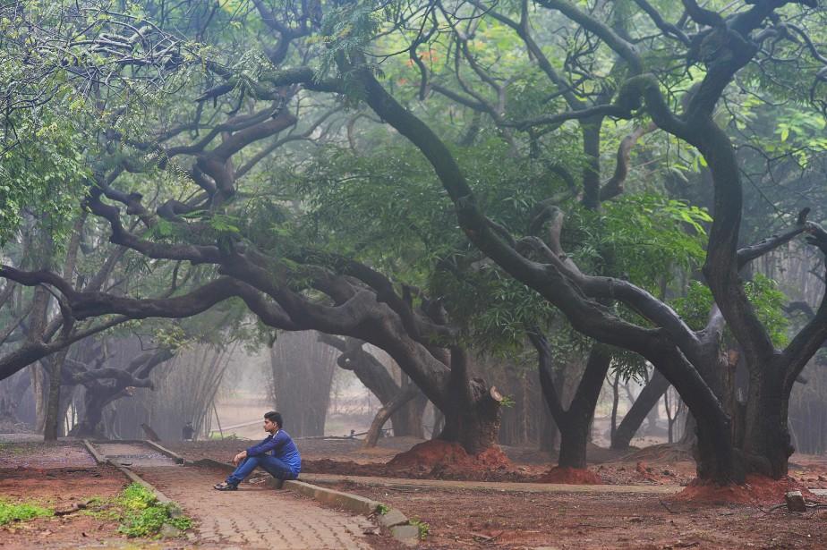 Un parc de Bangalore après les averses.... (Photo MANJUNATH KIRAN, Agence France-Presse)