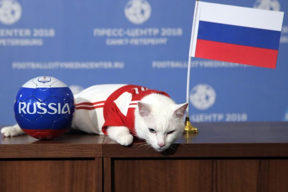 L'oracle de la Coupe du monde 2018 a... (Photo Dmitri Lovetsky, Associated Press)