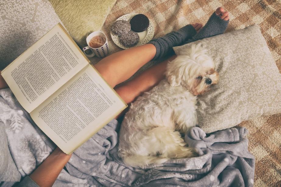 Les Québécois préfèrent-ils les romans écrits ici ou... (Photo Thinkstock)