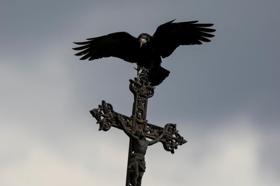 Un corbeau.... (Photo Gleb Garanich, archives REUTERS)