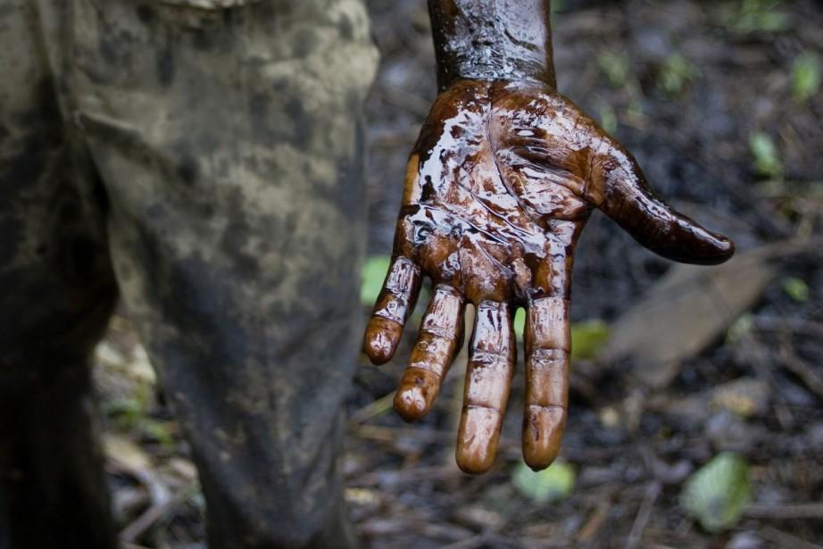 Le gouvernement congolais projette le «déclassement par décret... (Photo d'archives)