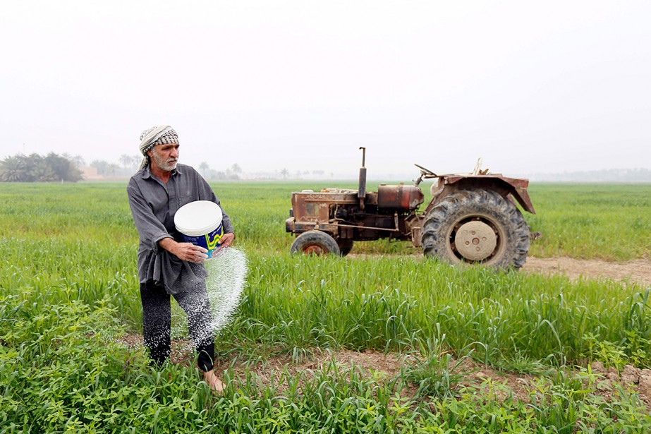 À la mi-juin, le ministère de l'Agriculture a... (Archives AFP)
