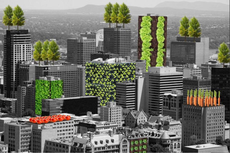 Montréal compte quelques toits verts d'envergure.... (PHOTO FOURNIE PAR LE COEUR DES SCIENCES)