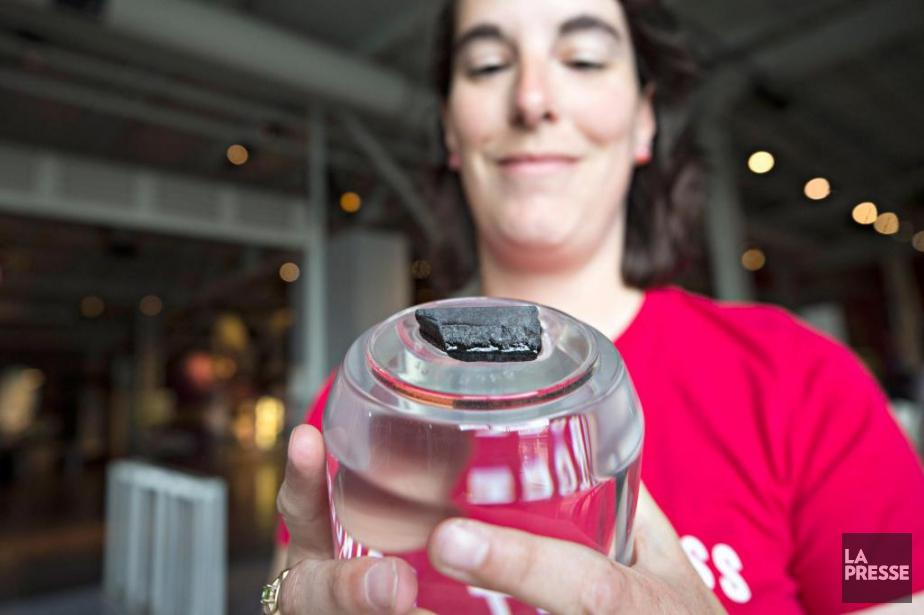 Sara Arsenault, chargée de projet au Centre des... (PHOTO PATRICKSANFAÇON, LA PRESSE)