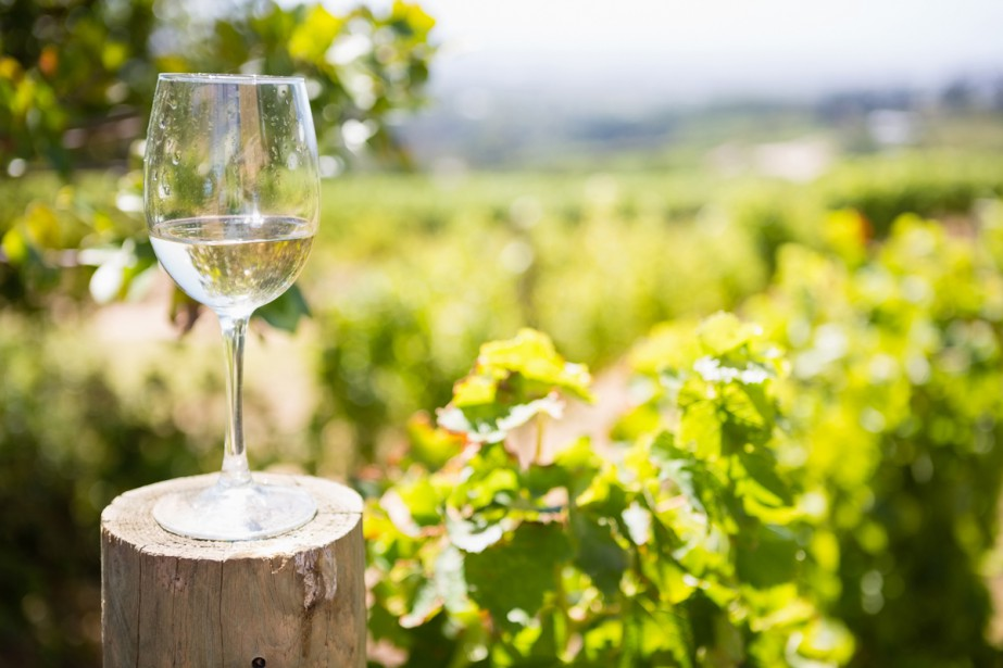 Chaque fois qu'on me demande quel est mon vin préféré, je... (Photo Thinkstock)