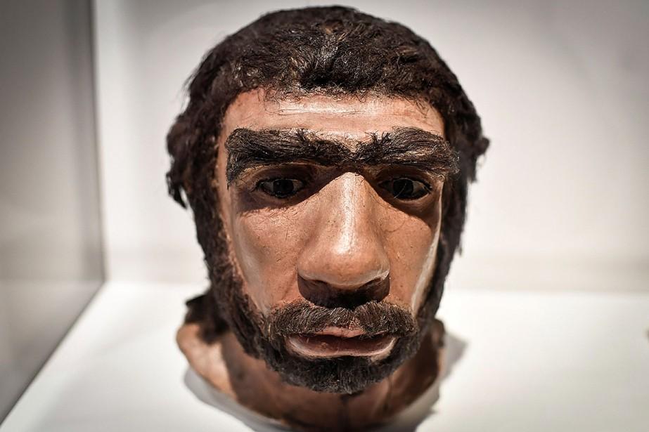 Représentation d'un homme de Néandertal, lors d'une exposition... (STEPHANE DE SAKUTIN, AFP)