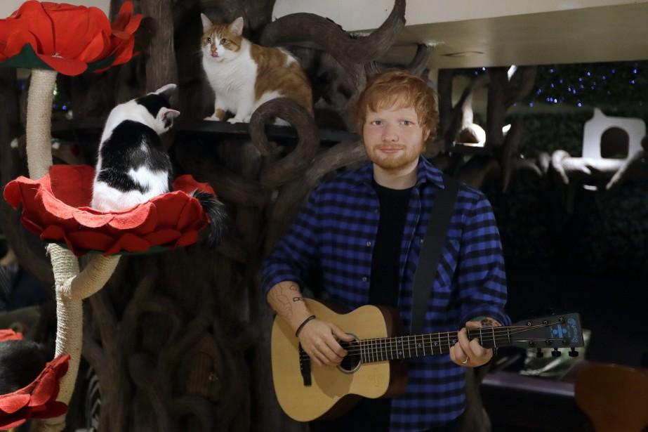 Ed Sheeran est connu pour sa passion pour... (Photo Kirsty Wigglesworth, Associated Press)
