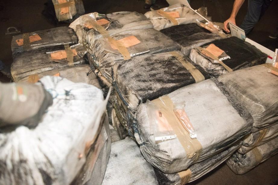 Les autorités ont pu recouvrer environ 1500kilogrammes de... (photo HO-Government of Martinique, archives la presse canadienne)