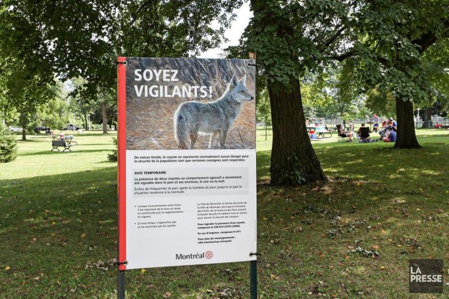 Les autorités municipales rappellent aux gens de ne... (PHOTO ROBERT SKINNER, LA PRESSE)