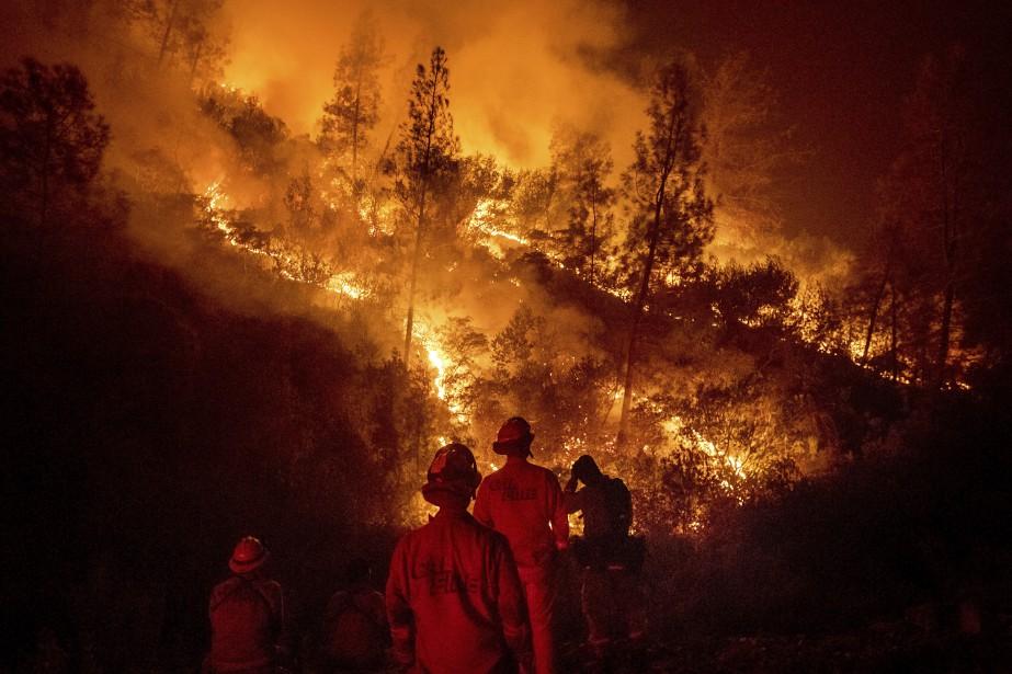 Depuis la mi-juillet, une dizaine de personnes -... (Photo Noah Berger, Associated Press)
