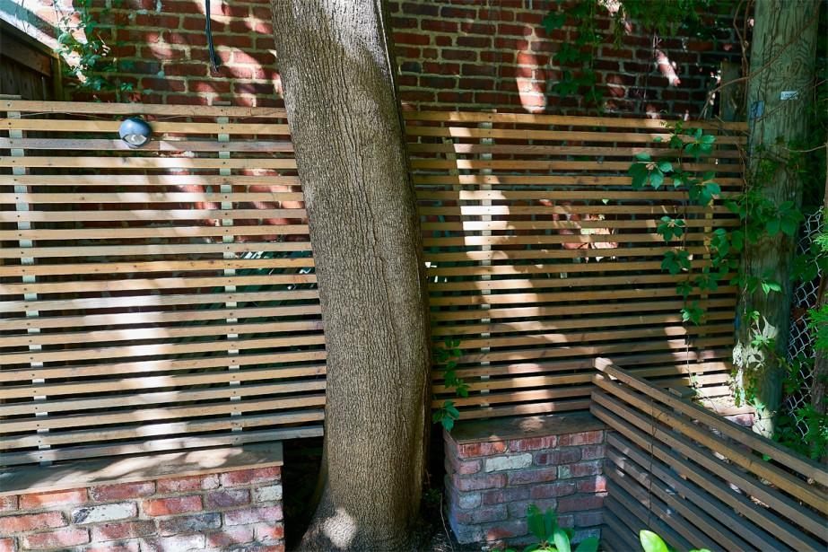 <strong>Arbre sauvegardé:</strong>Le paysagiste Jocelyn Lussier a bâti la cloison de bois et le muret de brique autour de l'arbre afin de le sauvegarder. Ce dernier oxygène la cour et lui apporte fraîcheur et prestance. (Photo André Pichette, La Presse)