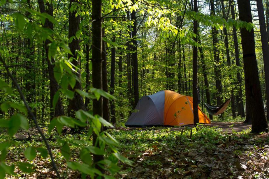 Les réservationspour les terrains de camping de la... (Photo Olivier Jean, Archives La Presse)