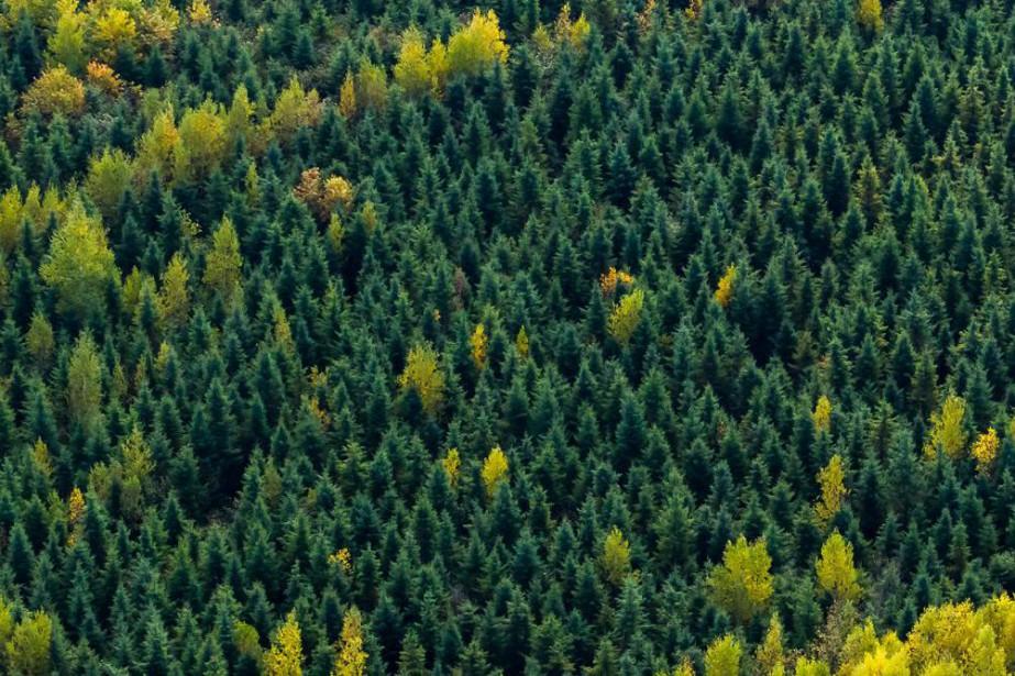 Tout de même paradoxal. L'environnement est l'enjeu qui... (PHOTO THINKSTOCK)