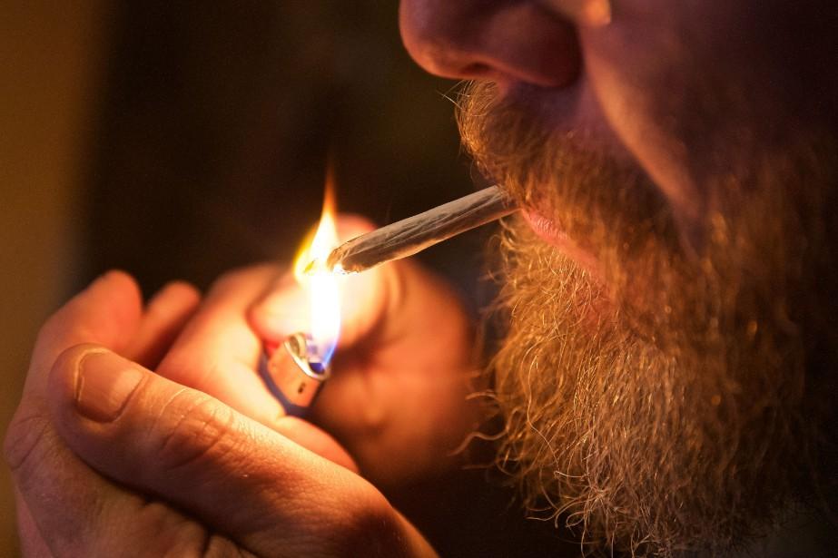 Même si le cannabis deviendra légal sous peu... (Photo André Pichette, archives La Presse)