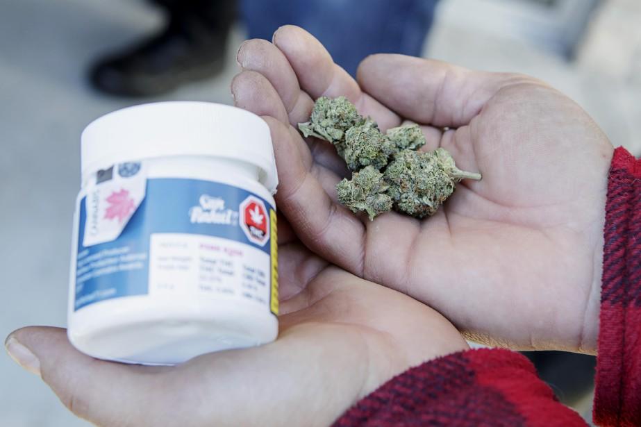 Les sociétés de cannabis sont devenues suffisamment grandes... (Photo Alain Roberge, La Presse)