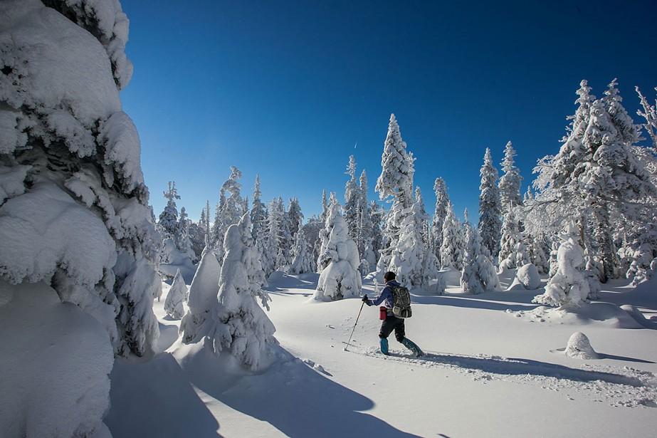 Sur cette photo d'archives, une skieuse dans le... (Photo Hugo-Sebastien AUBERT, archives La Presse)