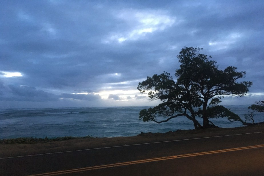 C'est l'ouragan Walaka qui, début octobre, aurait balayé... (Photo Caleb Jones, Archives AP)