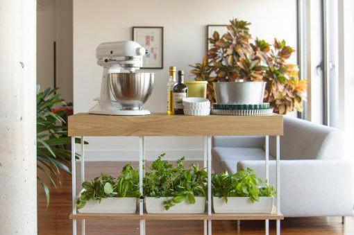 L'étagère Hirta format Famille permet de cultiver 24... (Photo fournie par Îlot culture)