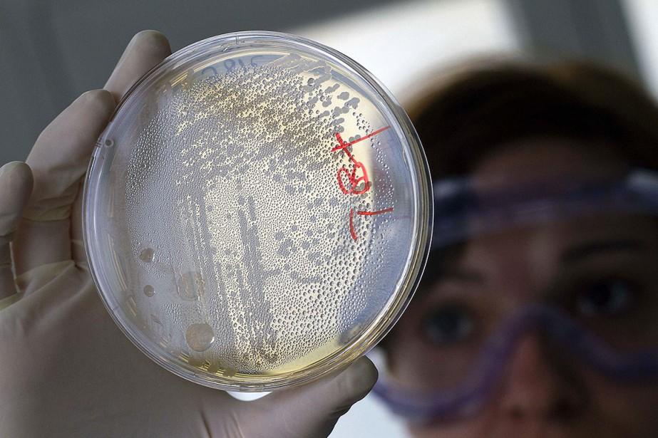 Découverts dans les années 1920, les antibiotiques ont... (Photo FRANCISCO BONILLA, archives REUTERS)