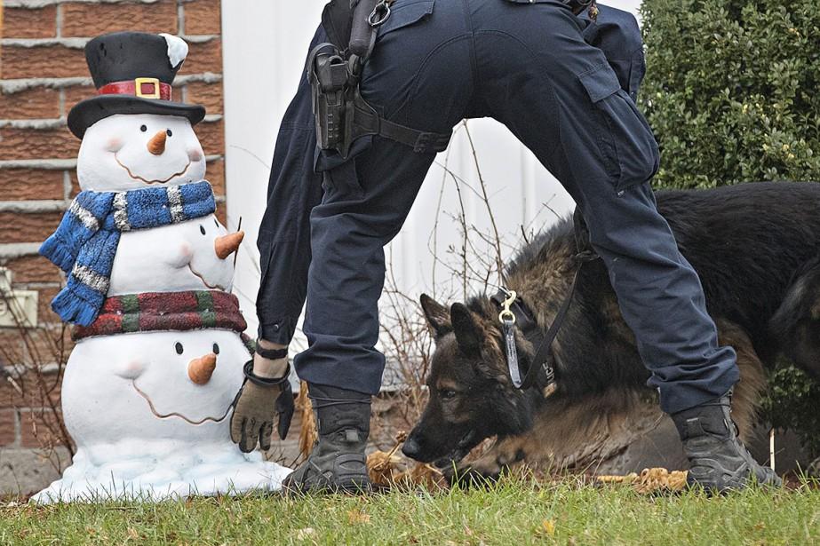 Le maître chien du SPVM a été appelé... (PATRICK SANFAÇON, La Presse)