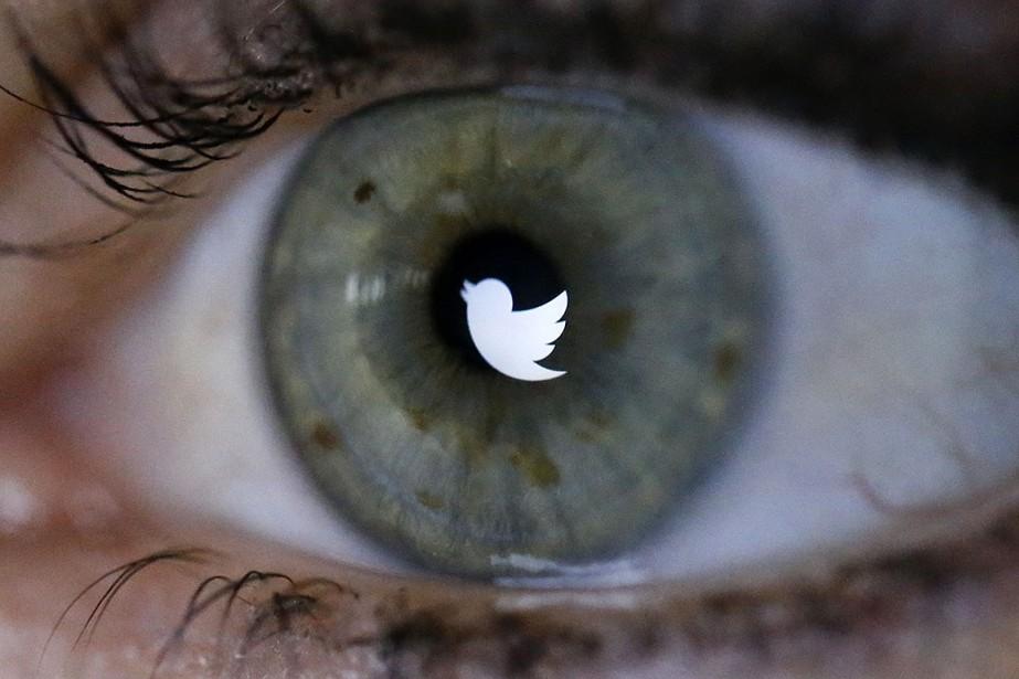 Les scientifiques ont découvert que 6% des comptes... (Photo FABRIZIO BENSCH, archives REUTERS)