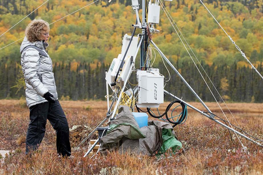 Michelle Garneau et d'autres chercheurs ont transformé un... (Photo LARS HAGBERG, AFP)
