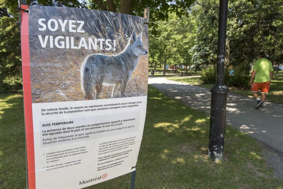 Pour y arriver, Montréal mènera un projet de... (Photo RyanRemiorz, La Presse canadienne)