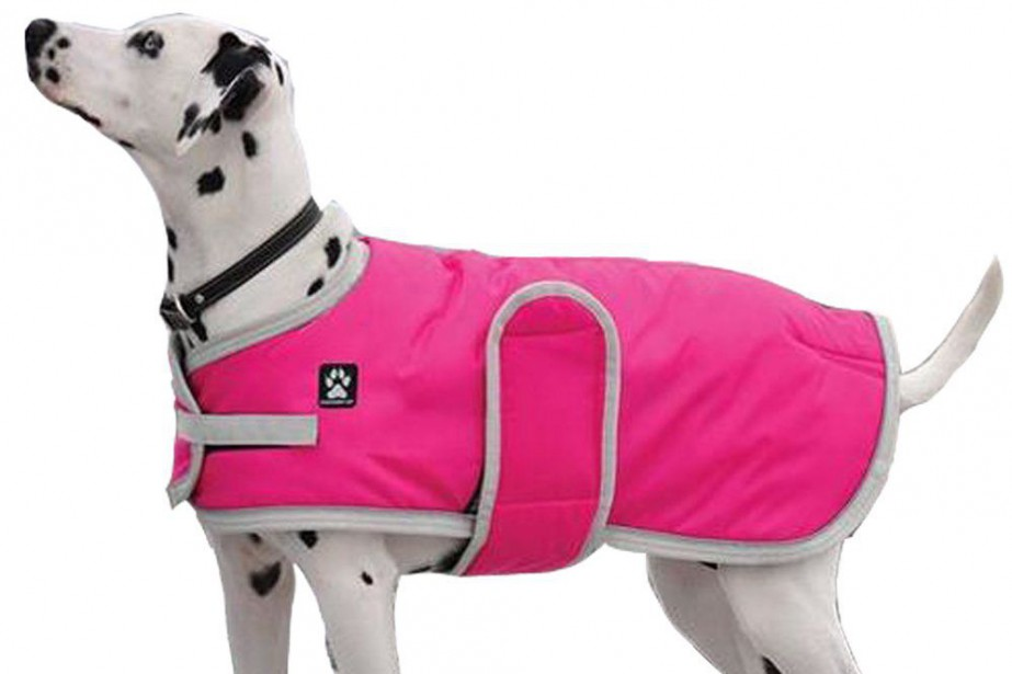 Manteau d'hiver pour chien, ShedrowK9, à partir de...