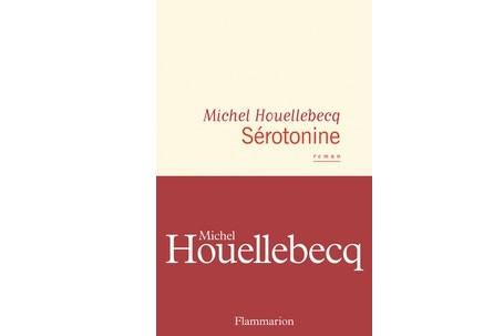 Michel Houellebecq Revient Avec Un Livre Sombre Et Poignant
