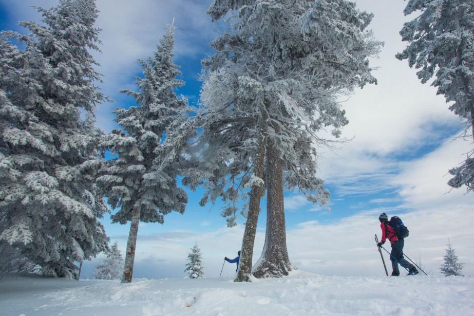 Le ski de fond dans un parc régional... (Photo fournie par l'Association des Parcs régionaux du Québec)