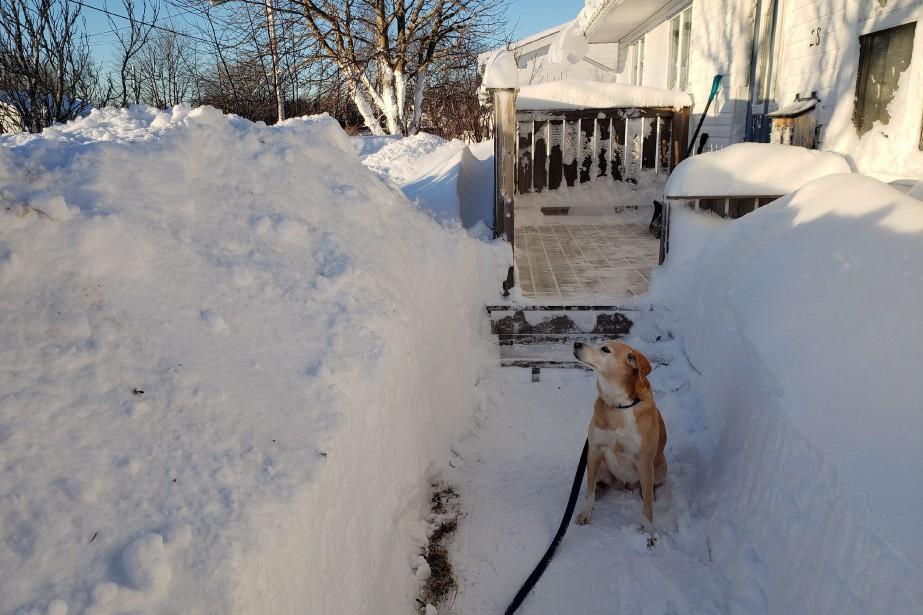 Avec la neige déjà accumulée au sol depuis... (PHOTO ERIC CHISHOLM, PC)