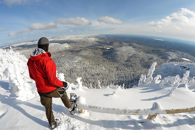 Randonnée hivernale | 22 janvier 2019