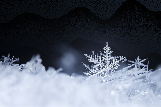 Blanche neige ()