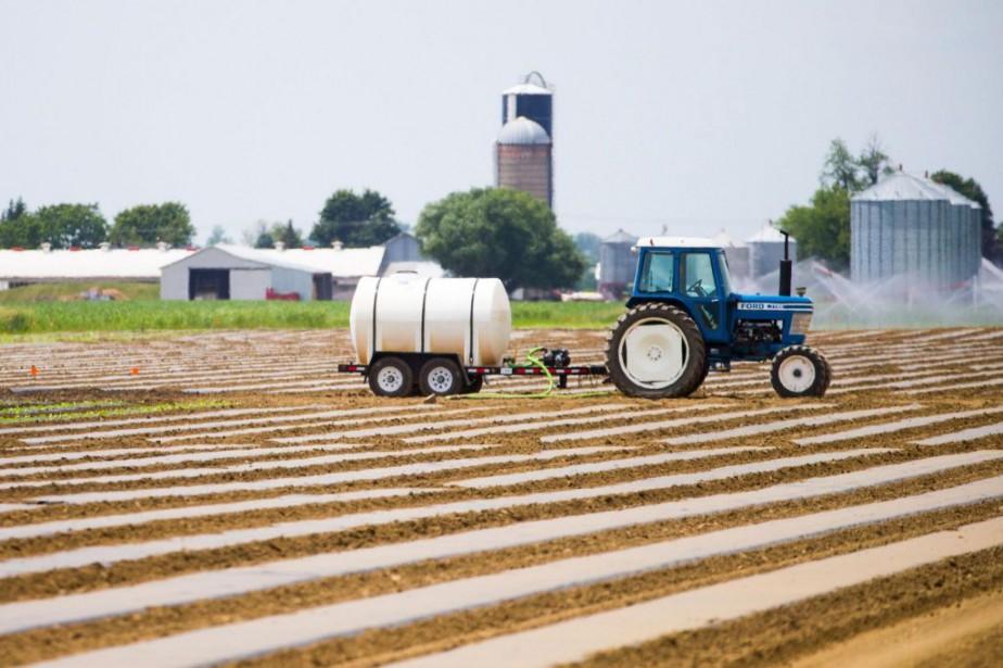 Louis Robert, agronome au ministère de l'Agriculture, a... (PHOTO MARTIN TREMBLAY, archives LA PRESSE)