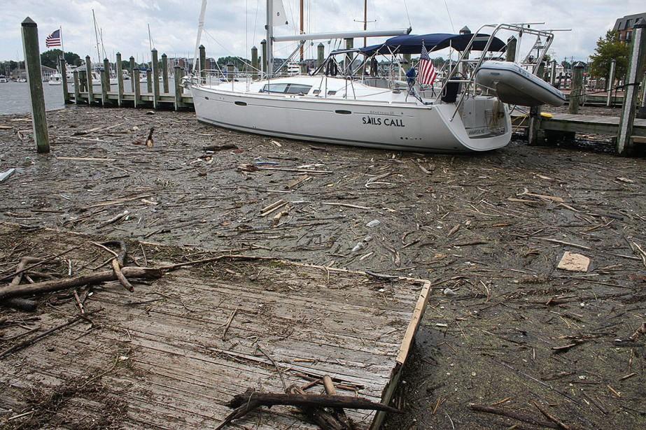 Des débris provenant de la baie de Chesapeake... (Photo Brian Witte, archives Associated Press)