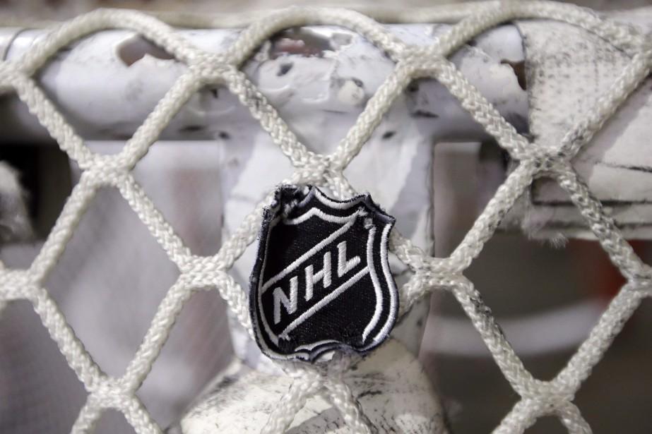 La Ligue nationale de hockey a... (PHOTO MARK HUMPHREY,  ASSOCIATED PRESS)